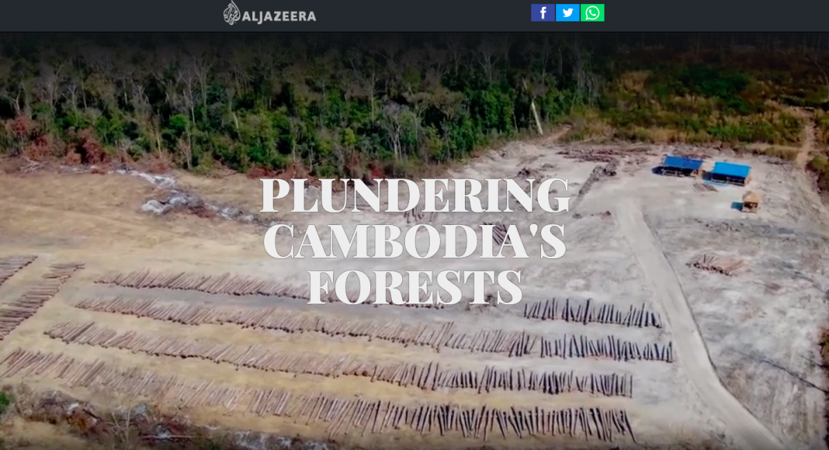 plundering cambodia u0026 39 s forests